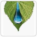 Vízoldható